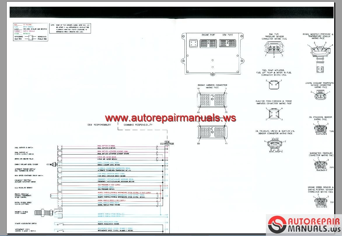 1997 Ford F 150 4 6 Engine Diagram besides HID With Relay Wiring Diagram in addition Chevy Firing Order Diagram besides Diagram As Well Ford Escort Lx 4 Fuse Box Diagram 300x221 1998 Ford moreover Cummins ECM Wiring Diagram. on ford 4 6l v8 engine diagram