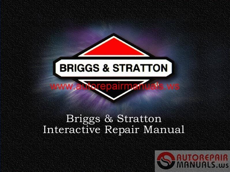 reparaturanleitung briggs stratton motor pdf